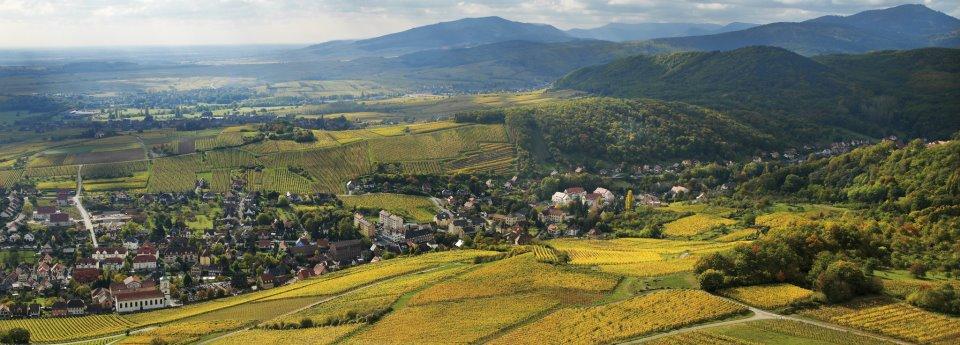 (c) Conseil Vins d'Alsace