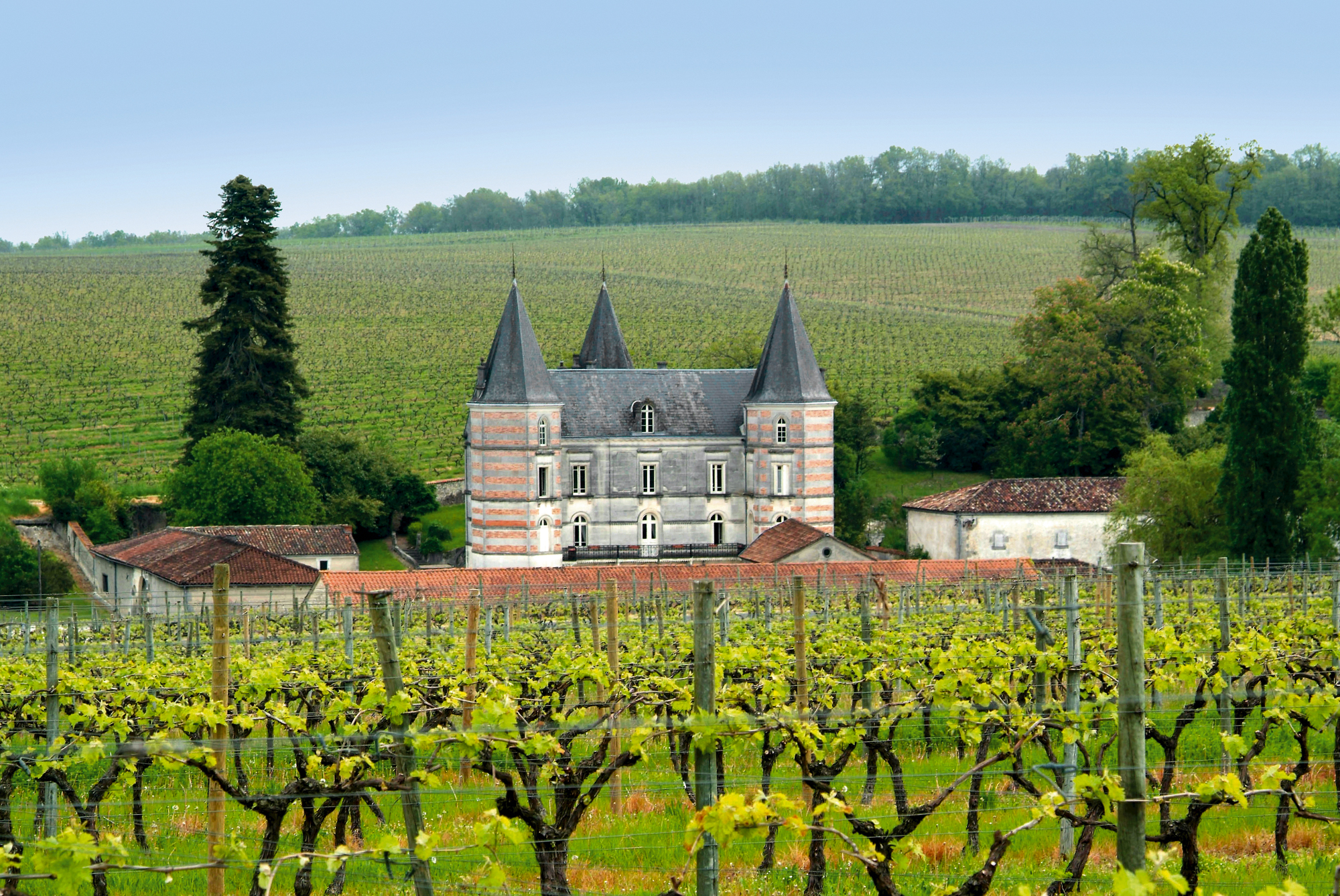 Nathalie Doucet : « L'amour du métier permet de transmettre le savoir-faire du cognac. »