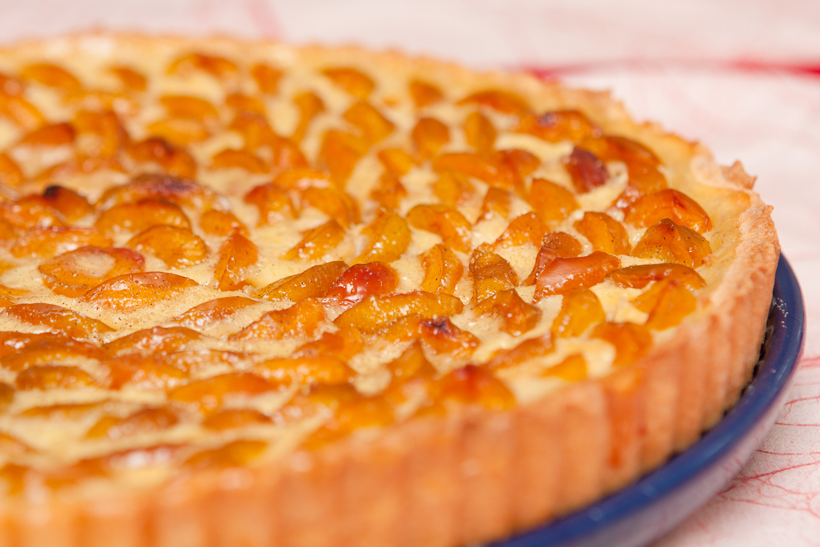 La recette du jeudi le g teau lorrain aux mirabelles le rendez vous des arts culinaires - Recette avec des mirabelles ...