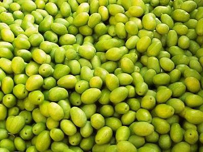 (c) Fête des Olives vertes